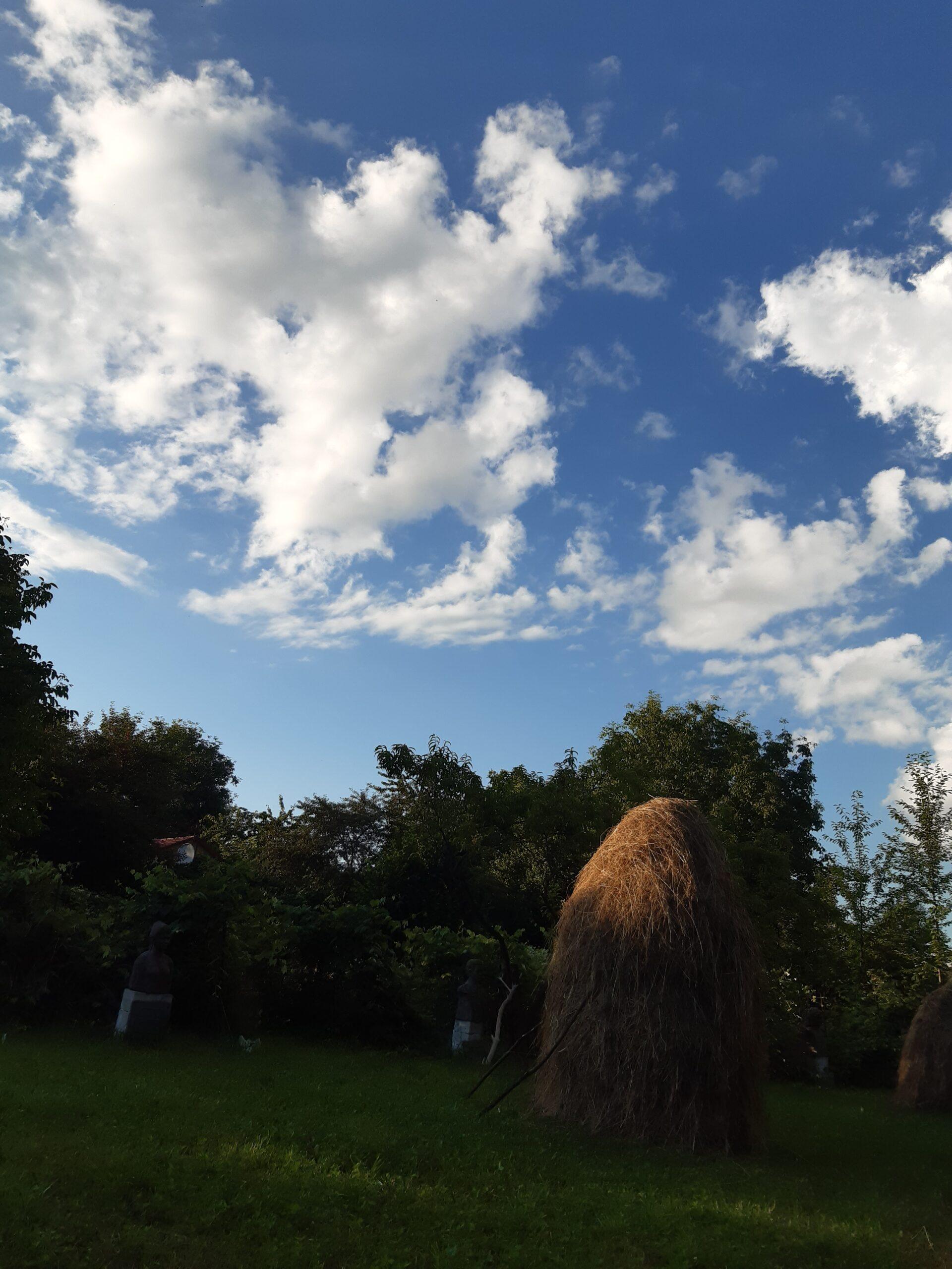 a 3 Norii se bucură la ceasul în care doar o jumate de căpiță mai este în lumina solară