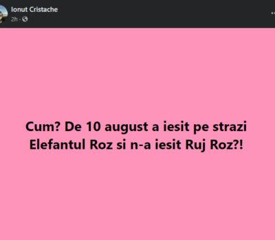 Facebook Ionuț Cristache (Elefantul Roz)