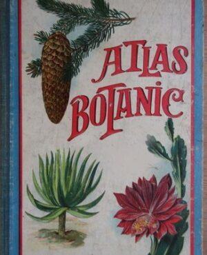 Atlas_botanic_1930_Cartea Romaneasca