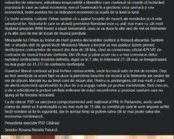 Roxana Paturcă Facebook 2