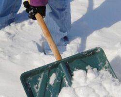 la zăpadă