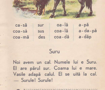 Abecedar_pagina 43_Suru