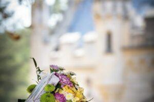 flori la castel2