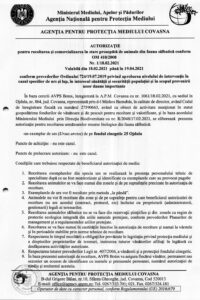 AM-nr1-2021-pag1