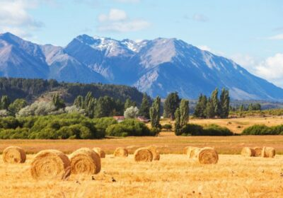 teren agricol Argentina