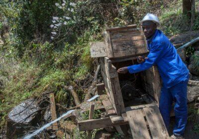 Colrerd Nkosi